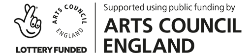 DFE - ACE Logo